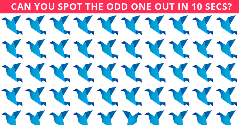 Only 1 In 50 People Can Beat This Odd One Out Test. Are You Up To The Task?