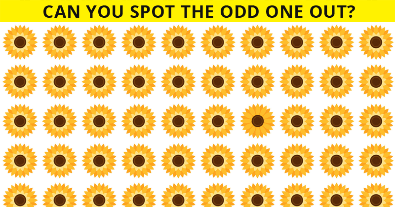 How Quickly Can You Complete This Multi-Level Odd One Out Visual Challenge? Not Many Can Do It In Under 60 Seconds!
