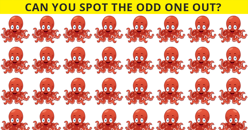Almost No One Can Ace This Tough Odd One Out Visual Test. How About You?