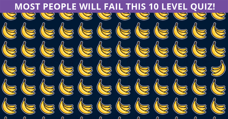 Only 1 In 30 Sharp-Eyed People Can Ace This Odd Ones Out Test. How About You?