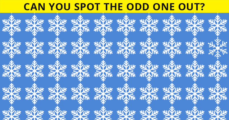 This Odd One Out Visual Puzzle Will Determine The Sharpness Of Your Eyesight!