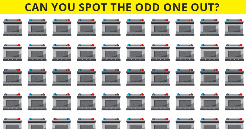 Almost No One Can Beat This Difficult Odd Ones Out Quiz. How About You?