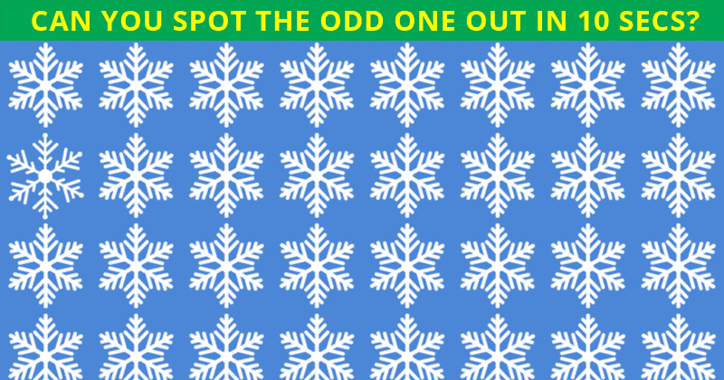 Only People With An Unusually High IQ Will Be Able To Ace This Odd One Out Visual Puzzle! Can You?