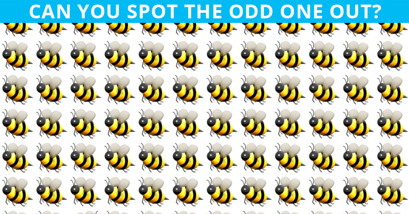Only People With A High IQ Will Be Able To Best This Odd One Out Visual Game! How About You?