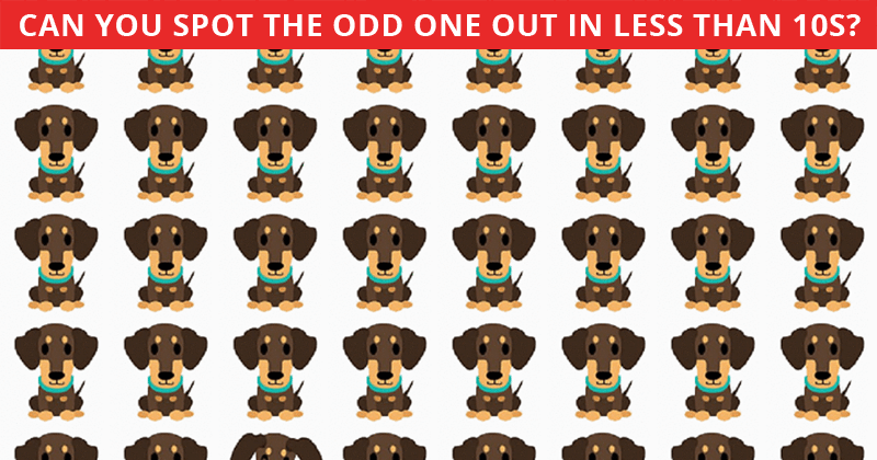 If You Can See The Odd One Out Within 30 Seconds, You Have A Very Sharp Mind