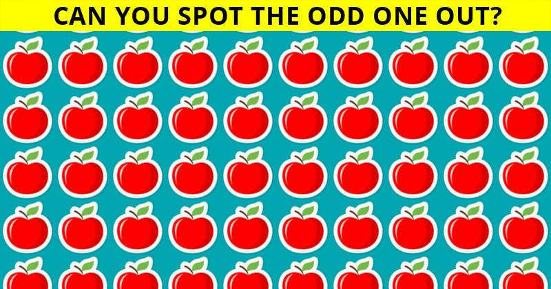 Only People With An Unusually High IQ Will Be Able To Ace This Odd One Out Quiz! How About You?