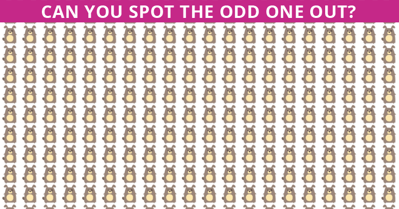 Only 1 In 35 People Can Achieve 100% In This Odd One Out Visual Test. Are You Up To The Challenge?