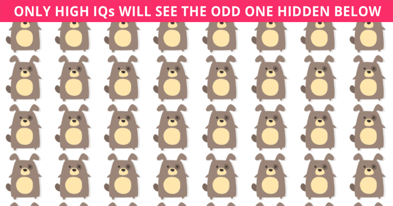 Only 9% Of People Can Beat This Odd One Out Visual Test. Are You Up To The Task?