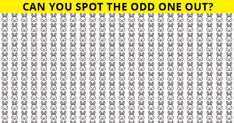 This Odd One Out Visual Test Will Determine The Sharpness Of Your Eyesight In One Minute