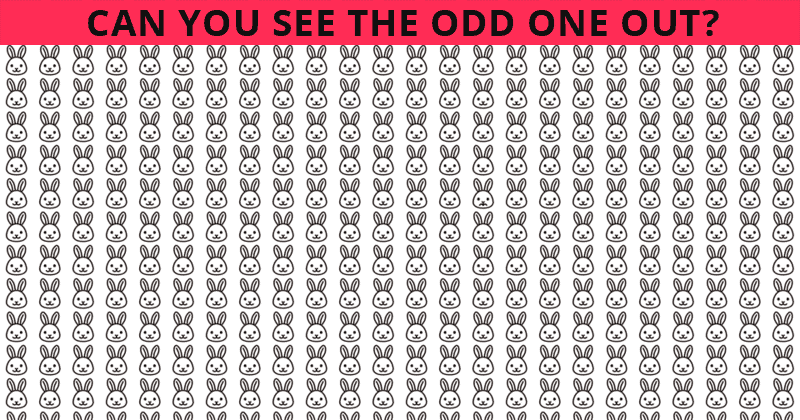Only 6% Of People Can Ace This Tough Odd One Out Test. How About You?
