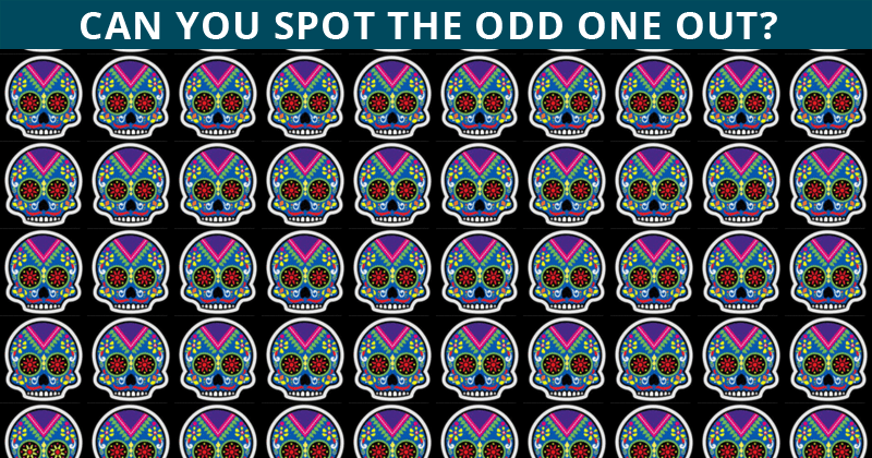 Very Few People Can Complete This Odd One Out Challenge. Can You?
