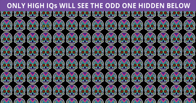 Only 1 In 30 People Can Beat This Difficult Odd One Out Visual Challenge. How About You?