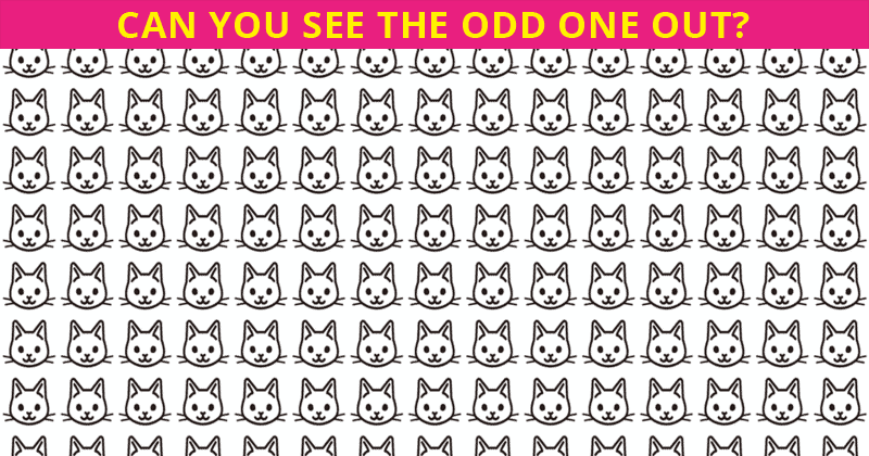 Can You Pass This Insanely Difficult Odd One Out Visual Test Quiz?