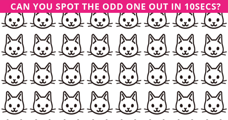 No One Can Pass This Visual Odd One Out Puzzle And It's Driving Everyone Crazy!