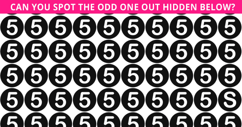 Only 1 In 30 People Can Ace This Tough Odd One Out Visual Game. How About You?