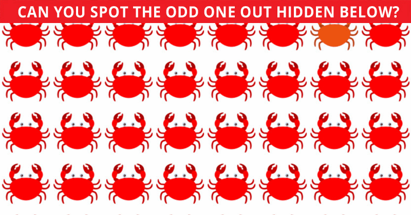 Only 20 People Have Passed This Odd One Out Visual Game So Far! Will You?