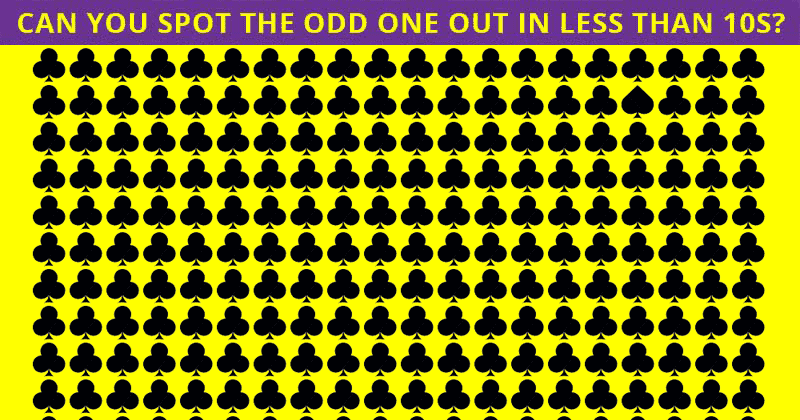 You're Probably A Genius If You Get 100% In This Odd One Out Visual Test!