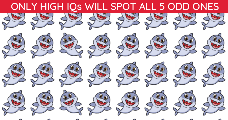 Almost No One Can Ace This Odd One Out Puzzle. How About You?