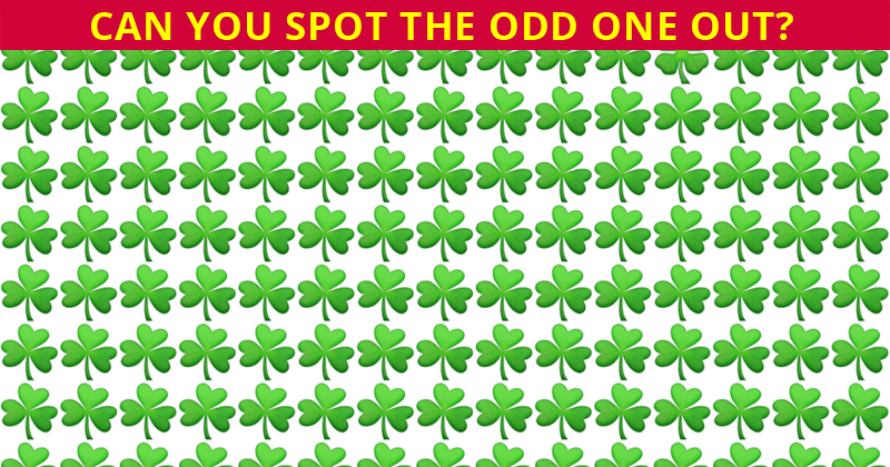 People Are Saying This Viral Odd One Out Quiz Is Impossible. Prove Us Wrong!