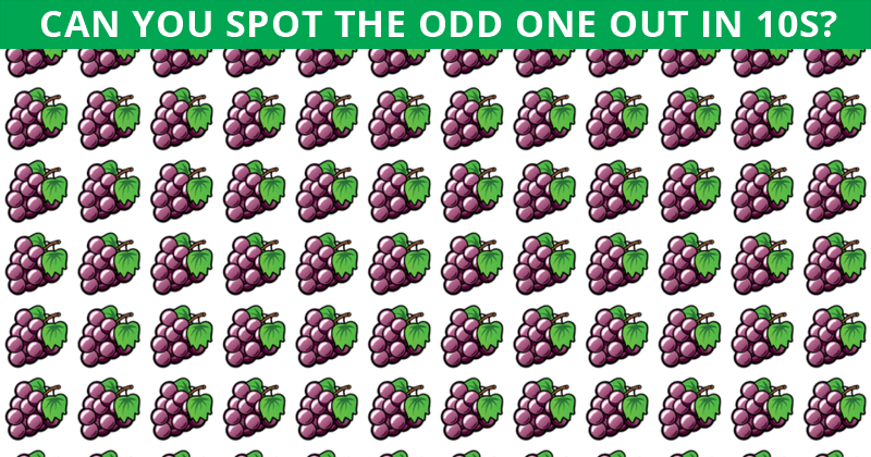 Only People With A High IQ Will Be Able To Ace This Odd One Out Visual Test! How About You?