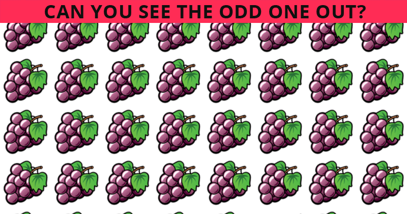 No One Can Score A Perfect 10 On This Tough Odd One Out Visual Game Without Cheating. Prove Us Wrong!