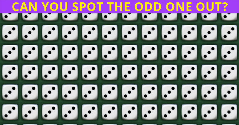 Almost No One Can Ace This Tough Odd One Out Puzzle. How About You?