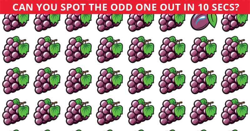 Almost No One Can Ace This Odd One Out Visual Test. How About You?