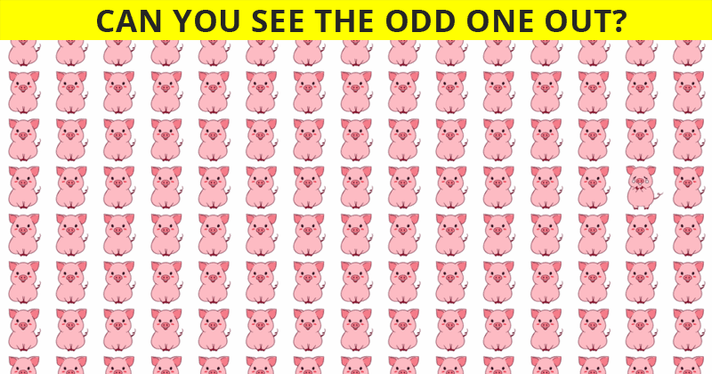 Only People With A Seriously High IQ Will Be Able To Best This Odd One Out Visual Game! Can You?