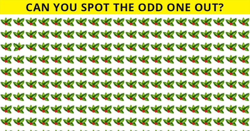 Only 1 In 30 Sharp-Eyed People Can Ace This Odd One Out Puzzle. How About You?