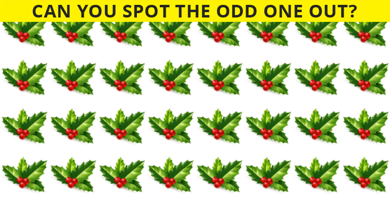 Almost No One Can Achieve 100% In This Odd One Out Test. Prove Us Wrong!