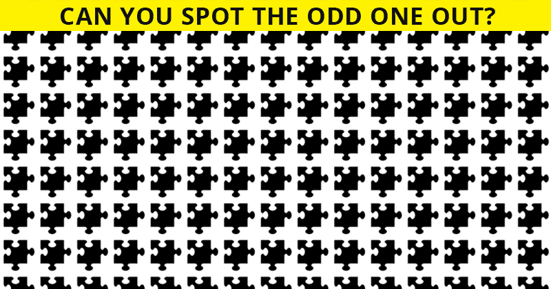 Only 7% Of People Can Nail This Odd Ones Out Quiz! Find Out If Your IQ Is High Enough To Pass This Test