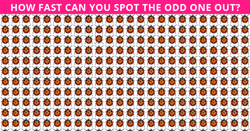Only 1 In 30 Sharp-Eyed People Can Beat This Tough Odd One Out Puzzle. How About You?