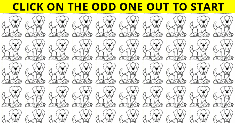 Only 4 Out Of 100 People Will Graduate From This Odd One Out Challenge! Will You?