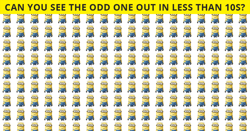 Almost No One Can Achieve 100% In This Odd One Out Test. Are You Up To The Challenge?