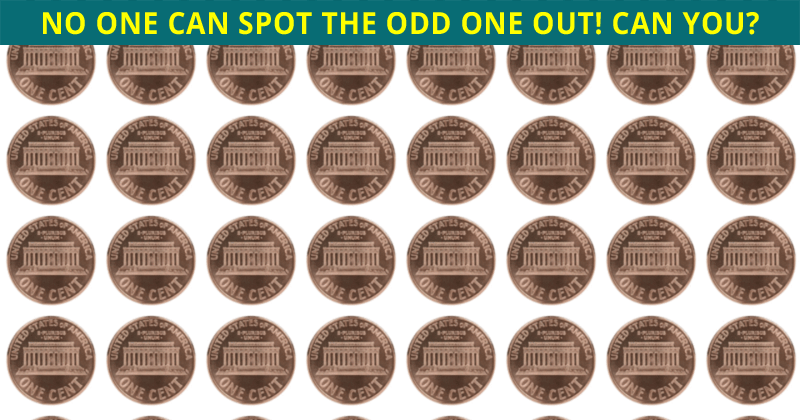 Literally Zero People Can Get 100% On This Odd Ones Out Visual Challenge. Prove Us Wrong