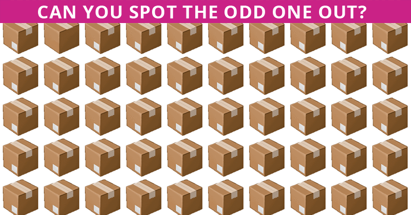 Almost No One Can Ace This Tough Odd One Out Test. How About You?