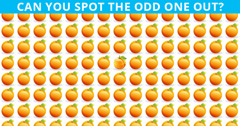 Almost No One Can Beat This Odd One Out Visual Puzzle. Are You Up To The Challenge?