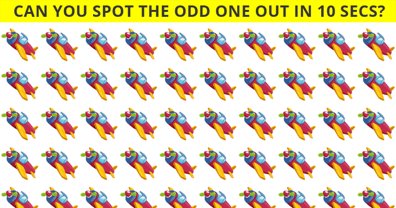 People Are Saying This Odd One Out Quiz Is Impossible. Prove Us Wrong!