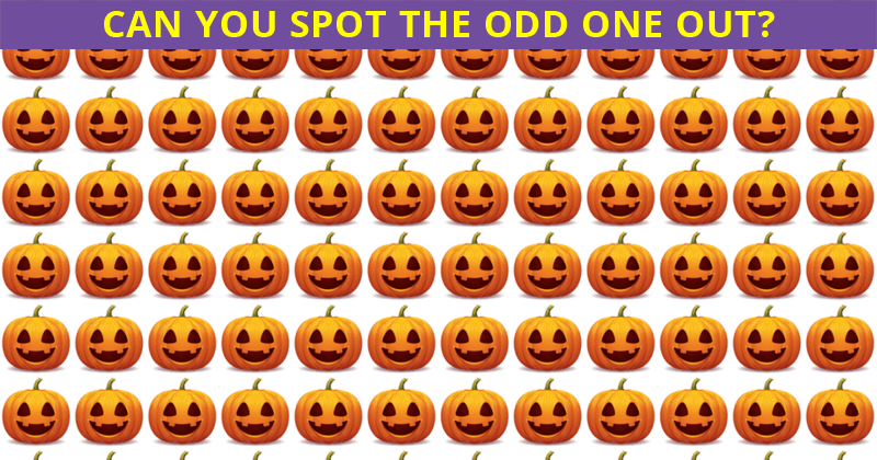 No One Can Score A Perfect 10 On This Odd One Out Challenge Without Cheating