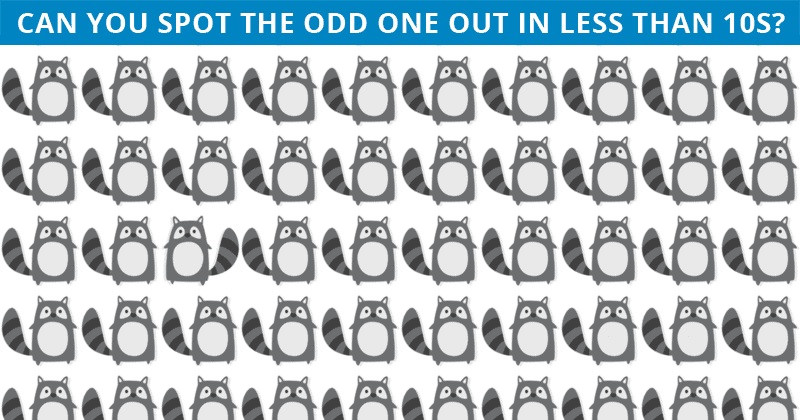 No One Can Score A Perfect 10 On This Tough Odd One Out Game Without Cheating. Prove Us Wrong!
