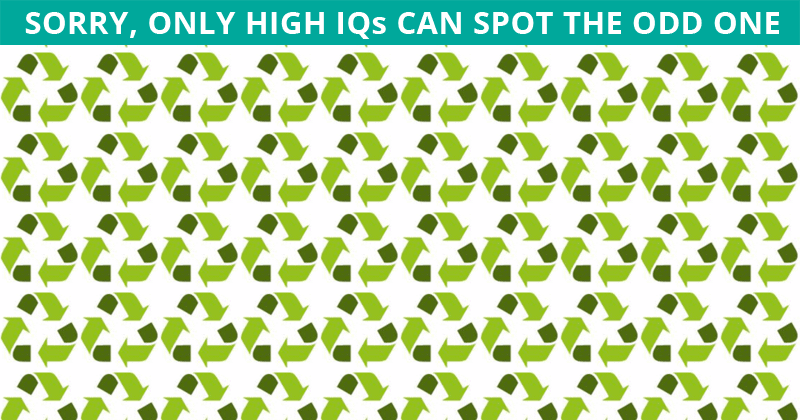No One Can Score A Perfect Score On This Odd One Out Visual Game Without Cheating