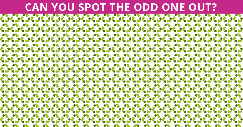 Only 5% Can Ace This Odd One Out Quiz! Find Out If Your IQ Is High Enough To Pass This Test