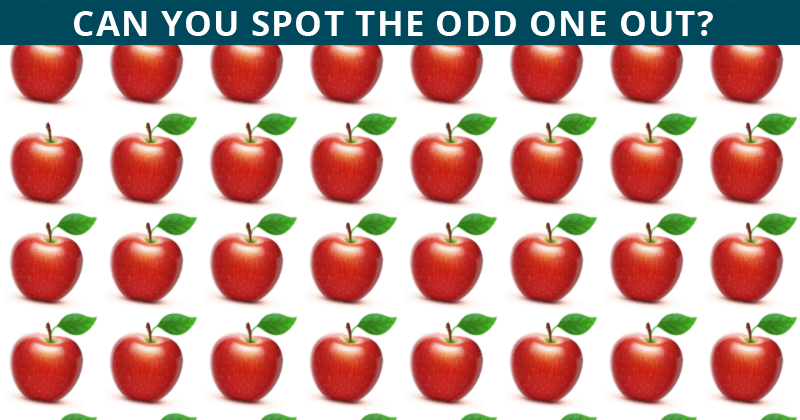 Fun Odd One Out Test To Check Your Focusing Abilities – Only 1 Person Out Of 60 Can Do It!