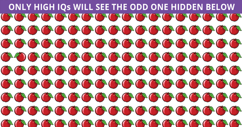 Only 4% Can Beat This Odd One Out Quiz! Find Out If Your IQ Is High Enough To Pass This Test