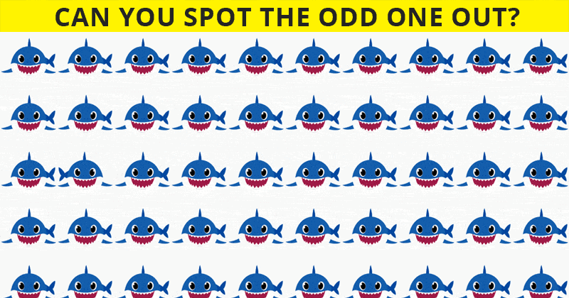 You Will Never Score More Than 50% In This Tricky Odd One Out Visual Test
