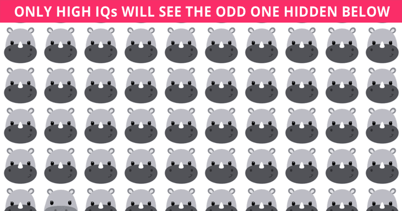 How Fast Can You Find The Odd One Out In This Visual Quiz?