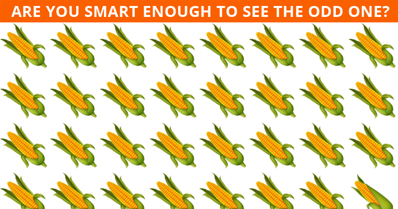 This Odd One Out Visual Quiz Will Determine The Sharpness Of Your Eyesight In Less Than One Minute