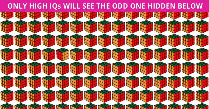 Only 6% Of People Can Beat This Odd One Out Visual Challenge. How About You?