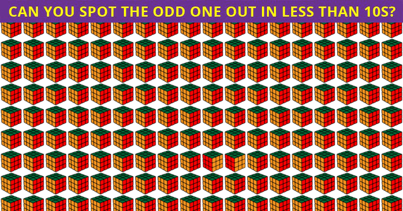 Only People With A High IQ Will Be Able To Best This Multiple Odd Ones Out Test! How About You?
