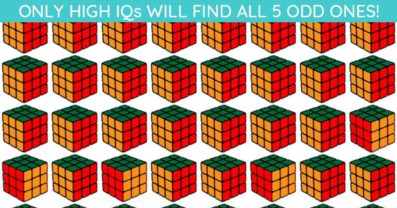 Only 1 In 40 People Can Ace This Challenging Multiple Odd Ones Out Test. How About You?